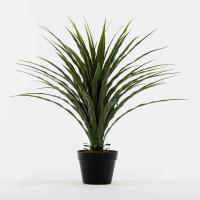 Τεχνητό Φυτό Νολίνα H70cm Φυτά