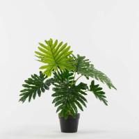 Τεχνητό Φυτό Φιλόδενδρο Η60cm Φυτά
