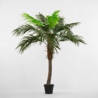 Τεχνητό Φυτό Φοίνικας Η2,30cm Φυτά